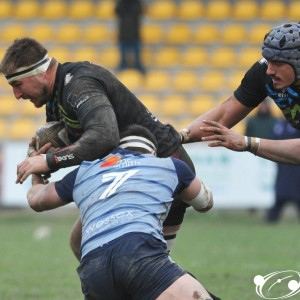 Guinness Pro14 2017/18: Zebre Rugby - Cardiff Blues 7-10 - Minnie Dsc_6158_1.jpg