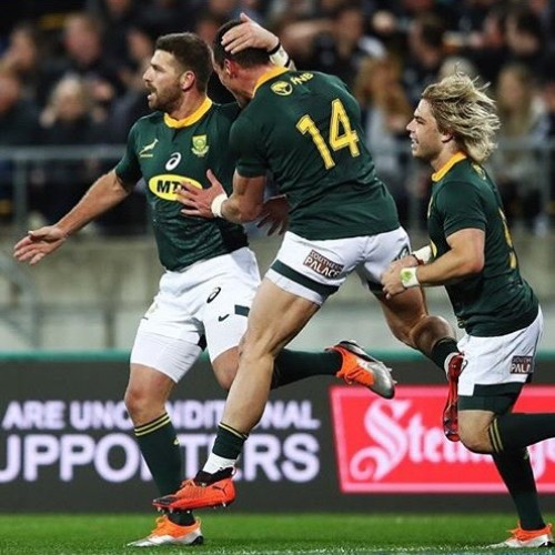 All Blacks - Sudafrica 34-36
