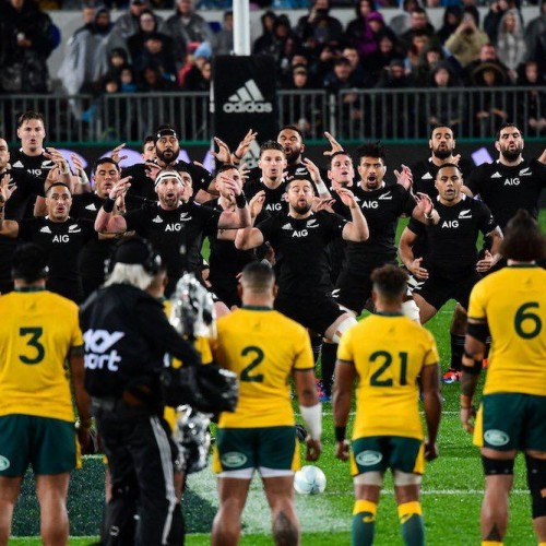 Bledisloe Cup: All Blacks, rivincita servita! Australia battuta 36-0