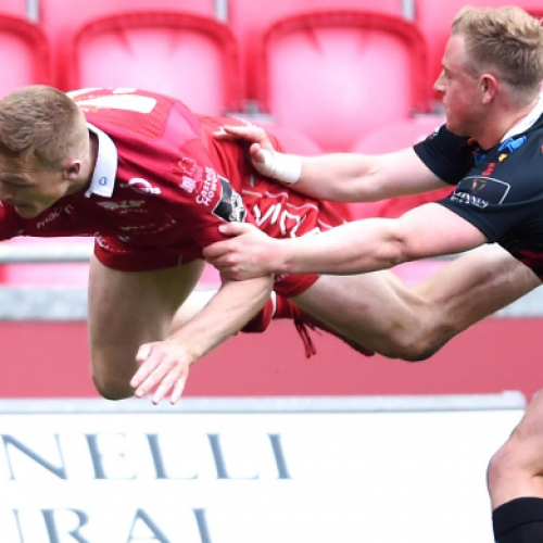 Gli highlights di Scarlets-Zebre 42-0 [VIDEO]