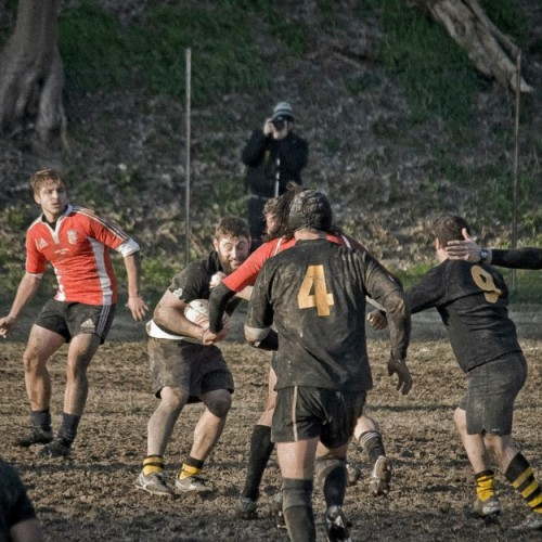 RUGBY SERIE C:  Rugby Macerata   29 - 3  Rugby Fermo