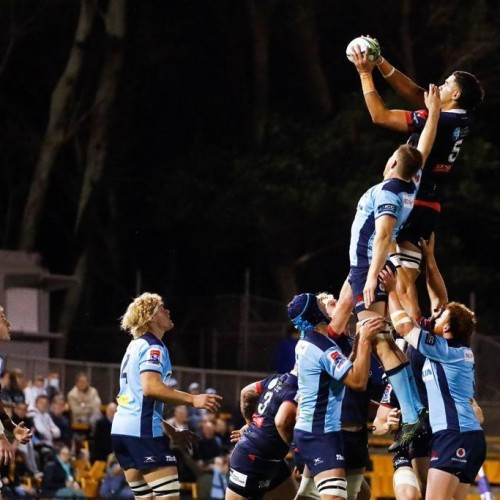 Super Rugby AU: passeggiano i Brumbies. I Waratahs non chiudono i conti playoff