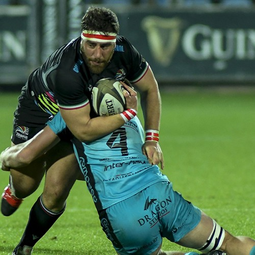 Zebre-Dragons 26-15, gli highlights [VIDEO]